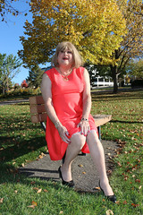 new121302-IMG_4643t (Misscherieamor) Tags: park tv sitting transformation feminine cd femme autumnleaves tgirl transgender mature sissy tranny transvestite parkbench crossdress ts gurl tg travestis prettydress travesti travestido travestie m2f xdresser tgurl traviesa travestito slipshowing travestit transwoman