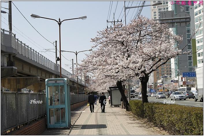 釜山溫泉站 (5).JPG
