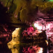 Howe Caverns - Howes Cave, NY - 2012, Apr - 22.jpg by sebastien.barre