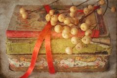 Me gustan los libros [EXPLORE THANK YOU] (Marisa y Angel) Tags: stilllife vintage nikon books textures libros texturas tabletop 2012 bodegon naturemorte d300 bodegones