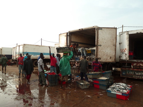Loading fish crates into a truck for the African region, Joal landing site, Senegal. Photo by Anne Delaporte, 2011