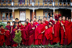 Waiting for the King (Lil [Kristen Elsby]) Tags: travel red topf25 scarlet waiting asia bhutan monk line monastery monks getty editorial topv4444 gettyimages bhutanese reportage robes gompa inarow flickrvision buddhistmonks buddhistmonk bumthang travelphotography jakar canon70200f28l canon7020028l goemba tamshinggoemba canon5dmarkii gettyimagesonflickr tamshinggompa flickreditorial