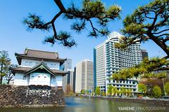 Kunaicho / Tokyo, Japan (yameme) Tags: travel japan canon eos tokyo    chiyoda   wadakurafountainpark kunaicho 24105mmlis 5dmarkii 5d2