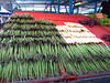 stk343hotorget (invisiblecompany) Tags: travel food fruit market stockholm vegetable asparagus 2012 hotorget