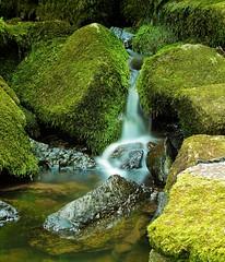 Mini-Wasserfall | Mini-Waterfall (Sebastian.Schneider) Tags: longexposure water germany deutschland waterfall wasser hessen wasserfall greifenstein langzeitbelichtung westerwald nenderoth ldk lahndillkreis lahndill