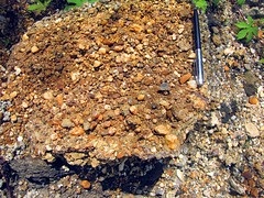 IMG_5389fr (Mangiwau) Tags: indonesia gold mercury air traditional mining rush illegal mineral exploration indonesian emas frenzy alam kantor peti nur alluvial rumbia raksa kendari dulang sultra eksplorasi gubernur pertambangan merkuri colluvial bombana