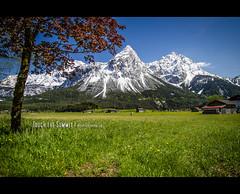 Touch the Summit (mcPhotoArts) Tags: sky mountain mountains alps nature berg landscape austria countryside tirol sterreich spring jahreszeiten natur himmel location berge ehrwald alpen orte landschaft springtime frhling lermoos