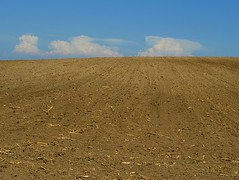 Genesis 3:19 unto dust you shall return (mags_Tag) Tags: dusty field clouds austria poem feld wolken cornstalks genesis apocalyptic tseliot oesterreich loweraustria niederoesterreich staubig eastcoker neulengbach umsee