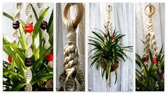 Southern Charm- Handmade Natural Hemp Macrame Plant Hanger- Hanging Basket (Macramaking- Natural Macrame Plant Hangers) Tags: new autumn orange plants brown plant fern green hippies garden idea beads nc colorful basket natural herbs gardening handmade decorative character cottage craft ivy northcarolina funky nostalgia deck gift zen porch hanging americana hippie conversation fengshui flowing organic chic etsy cheerful 1970s boho frontporch groovy knots hang bohemian homedecor hanger macrame fibers sweettea hemp madeinusa ecofriendly accessory porchswing hangingbasket hangingbaskets bohochic containergardening macram planthanger vintagebeads planthangers southerncharm vintagetreasures decorativeknotting naturalhemp macrameplanthanger macramaking chinesecrownknot httpwwwetsycomshopmacramaking macrammacramaking