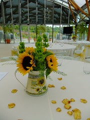 DSCF3600 (Vicky Spence) Tags: wedding flower green yellow gardens sash alnwick northumberland sunflower jug hire greenbell chaircovers thlaspi molucella floralquarter
