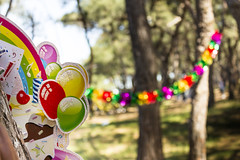 Birthday Party Decorations (vuralyavas) Tags: birthday park family blue trees light red party music sun tree green colors yellow forest children fun dance colorful picnic colours child open air celebration colourful