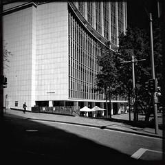Sauntering in the city (Albion Harrison-Naish) Tags: au sydney streetphotography australia newsouthwales paddington sydneycity