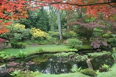 Japanese Garden in The Hague (maarten49) Tags: japanesegarden spring nederland thenetherlands denhaag thehague clingendael voorjaar japansetuin