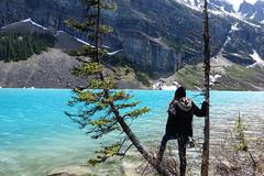 DSC03763 (NIKKI BRITTAIN) Tags: park canada color art nature photography banff lakelouise