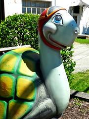 La tortue souriante (e r j k . a m e r j k a) Tags: smile washington whimsy turtle pennsylvania tortoise figure roadside canonsburg i79pa erjkprunczyk