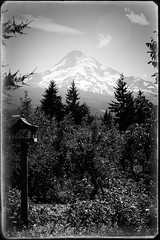 Mt Hood (younger than yesterday) Tags: oregon volcano mthood