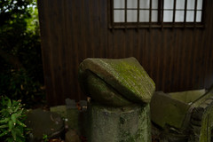 (LAYDOCK) Tags: nikon 28mm saga  shintoshrine d610   hiejinjashrine  nikonafsnikkor28mmf18g  hizentorii
