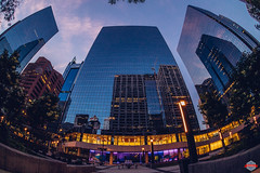 Shiny Night (Rob Moses) Tags: calgary alberta canada yyc city urban metro downtown sky buildings architecture citylife modern building glass reflection mirror night evening sunset money atb sony a7ii fisheye converter conversion mirrorless clouds 16mm 28 outdoor beautiful beauty pretty amazing lights light