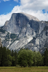 Half Dome (hardaker) Tags: travel trees mountain nature beautiful face grass rock wall pine forest carved nationalpark surface yosemite dome granite halfdome sheer leavse mountainmonday tofb
