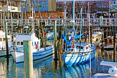 Fishermans Wharf10252007 - Copy (digifotovet) Tags: sanfrancisco california boat fishing fishermanswharf