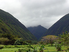 DSC03415a (Vincent Fryhover) Tags: day cloudy valley waipio fryhover
