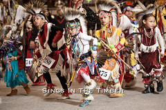 IMG_5231 (Sings In The Timber) Tags: grass tooth children fan dance montana university adams native indian traditional contest ceremony feather grand center dancer missoula event american fancy mens ribbon elk tradition plains jingle bustle entry indigenous headdress powwow salish chippewa tinytot blackfeet kyiyo