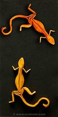 Richard Wang Origami Gecko (Himanshu (Mumbai, India)) Tags: orange india art yellow modern paper origami box handmade reptile contemporary craft poland polska lizard richard gecko wang mumbai modele łódź rzeźba pleating himanshu polskie sztuka snowblue składanie nowoczesna papieru papierowe orukami himanshuagrawal himorigami himanshuorigami