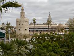 Torre del Oro y la Giralda, Sevilla (Chodaboy) Tags: espaa del de sevilla andaluca spain guadalquivir torre andalucia espana andalusia gaspar andalusian oro roguadalquivir chodaboy gasparserrano rioguadalquivirrio torregiraldalumixlumixg3g3photofotopaisaje