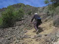 hiking up Steamboat Rock (jcoutside) Tags: bankslake grandcouleedam grandcoulee basalt dryfalls steamboatrock sunlakesstatepark iceagefloods mosescoulee umatillarock