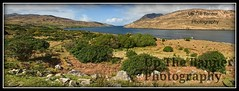 Panoramic landscape photography from connemara county galway, ireland. Picture was 4 captures merged into a panoramic , taken just outside leenane in connemara. fish farm and sea boat cruise trip. (upthebanner) Tags: trip cruise blue trees ireland irish house holiday fish seascape mountains green galway nature field clouds landscape photography drive countryside boat fishing nikon rocks walks stones farm pano farming lifestyle noel panoramic hike hills adventure business trail moore coastal connemara sail irlanda leenane upthebanner
