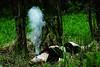 316/365: Breathe into me (Rebecca Pullins) Tags: alaska self babypowder breatheintome