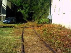 Long Abandoned Railroad Track (Rogar49) Tags: tunnel trains wv wheeling railroadtracks abandonedtracks wheelingbridgeandterminalrailroad