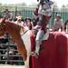 Renaissance Pleasure Faire 2012 058