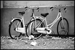 May 20,2012 04:03 AM : Earthquake in Emilia - Sant'Agostino (brtsergio) Tags: bw italy ir blackwhite earthquake emilia infrared terremoto santagostino irmodifiedd100