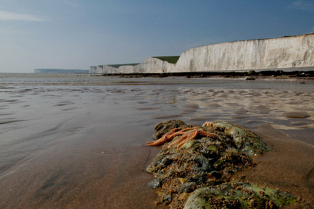 Looking from Birling Gap to Seven Sisters