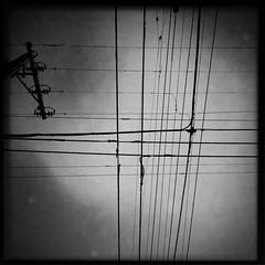 Your Celebration (Jeremy Brooks) Tags: sanfrancisco california blackandwhite bw usa blackwhite powerlines wires iphone sanfranciscocounty hipstamatic