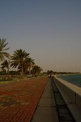 Promenade (Keith Mac Uidhir  (Thanks for 3m views)) Tags: trees sea plant green water asian bay asia gulf palm east walkway corniche middle doha qatar catar  katar    qatari      dauha   addawa     dauh