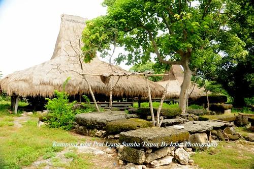 Prailiang Traditional Village East Sumba