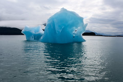 IMG_4884a (markbyzewski) Tags: alaska ugly iceberg tracyarm