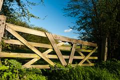 DSC_9885 (Adrian Royle) Tags: sky field gate walk lincolnshire hedge louth lincolnshirewolds bimble