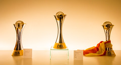 Fifa Club World Cup Trophy (dandi723) Tags: world barcelona camp cup museum club canon lens eos football spain barca stadium fifa flag soccer espana trophy catalunya 1022mm nou fcb 550d eos550d