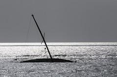 Sink, Sank, Sunk (gpa.1001) Tags: sailboat hawaii sunken lahaina