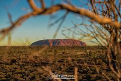 Uluru (Qicong Lin(Kenta)) Tags: sunset rock landscape nikon natural central australia uluru d5 northernterritory ayersrock