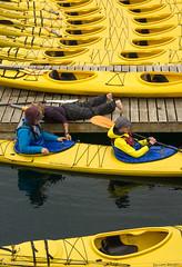Kayaks (NikonStone (on and off)) Tags: oar nikon d7100 tourist tourists kayak kayaks yellow street streetphotography lesund alesund travel kayakrental
