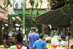 (by claudine) Tags: world flowers food flower green vegetables architecture umbrella shopping walking asian thailand vines travels asia dof looking market photos bangkok unique culture vine tourist exotic entryway thai entry attraction customs expat travelphotography pakklongtalad yodpimanflowermarket byclaudine