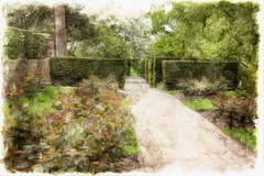 Down the Garden Path (Audrey A Jackson) Tags: trees colour history nature wall canon garden shrubs pathway hedgerow wolverhampton wightwickmanor 60d 1001nightsmagiccity smartphotoeditor