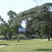 13 tucuman parc