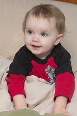 Alannah Under the Covers (Craig Dyni) Tags: girl toddler madelyn alannah dyni