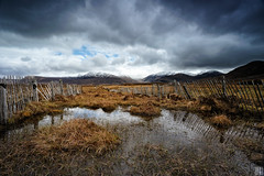 weathered fences - Fannichs Nothern Scotland (gregor H) Tags: old wild mountain fence dark landscape scotland highlands gloomy fences scottish weathered marsh moor wellies marshland kneedeep ullapool carlzeiss zf stromy distagont3518
