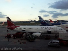 N680TA (William Oliveira.) Tags: plane de airplane airport gate flickr swiss finger aircraft aviation airplanes wing picture engine internacional plan aeroporto lg patio lan sp planes airbus paulo avio aviao airlines avin aeropuerto so turbine aereo avion aviao a320 aircrafts guarulhos gru taca  aviacin flug aviacion  luftfahrt aereas cauda aviaao aviacao aeronave laviation aeronaves  luftfart aviaion sbgr n680ta  lgoptimusone
